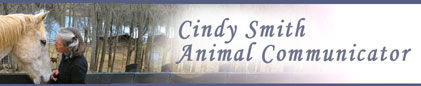 Mindful Mutz Training and Behavior Consulting - Cindy Smith Animal Communicator